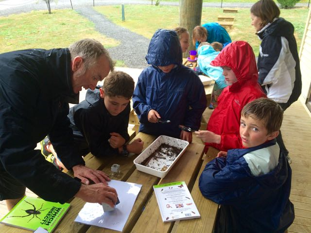 Richard helping to identify the creepy crawlers found in the bush floor.